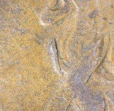 1880 ODD-001 - Indian Head Penny - Photo by David Killough