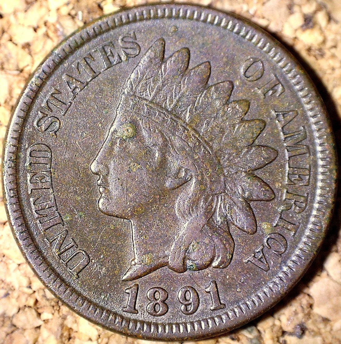 1891 RPD-009 - Indian Head Penny - Photo by David Killough