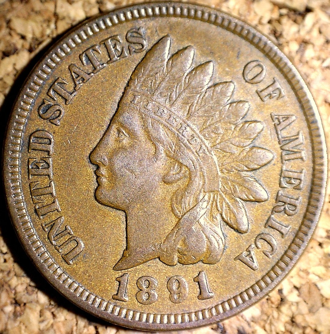 1891 MPD-001 - Indian Head Penny - Photo by David Killough